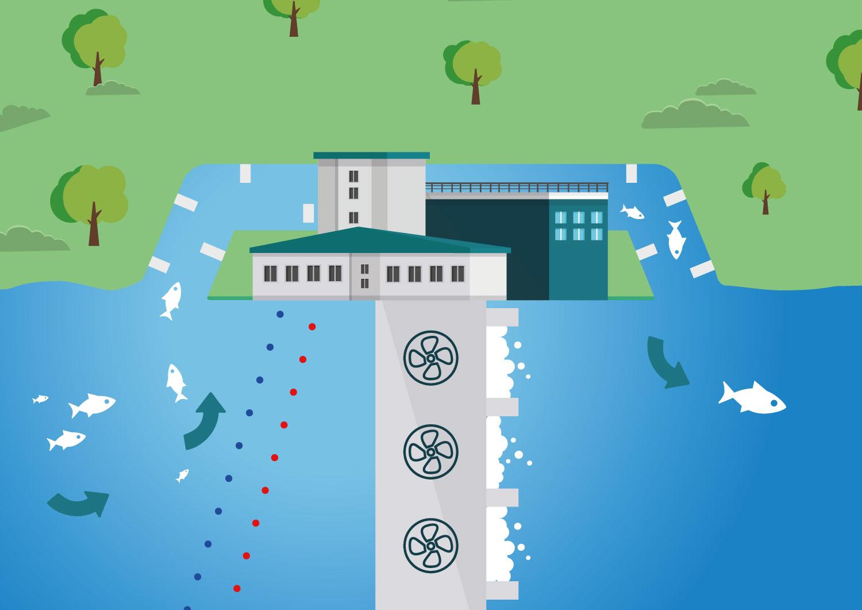 Bariera elektryczna dla ryb