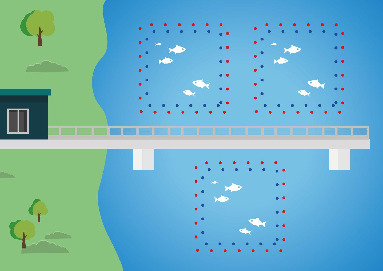 Ochrona farm rybnych i stawów