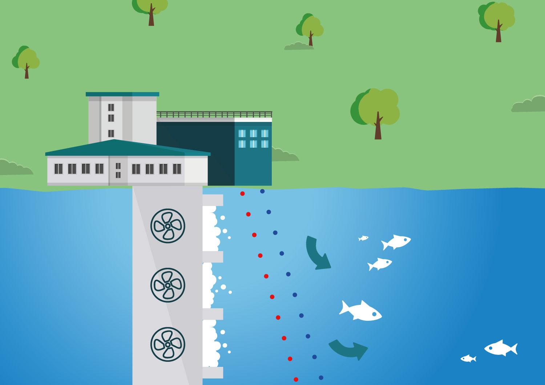 elektryczne odstraszacze dla ryb